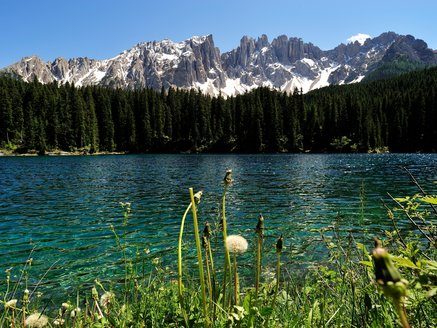 The Lake Carezza under the Latemar in Spring
